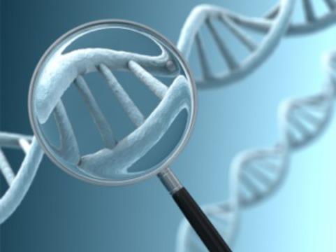 [Создана методика] скоростного диагностирования генетических заболеваний