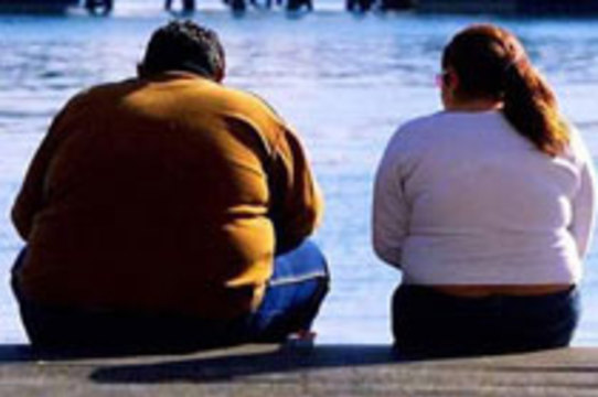 Сенат Аргентины одобрил [закон о борьбе с ожирением]