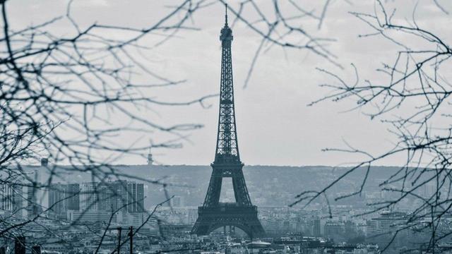 """Появились доказательства существования COVID во Франции до известного """"китайского следа"""""""