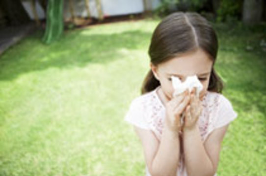 Ученые разработали принципиально [новый подход к лечению астмы и аллергий]