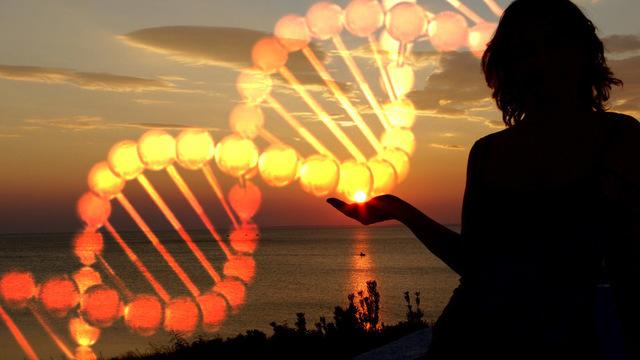 Любовь к солнцу: нездоровая зависимость, заложенная в генах?