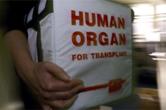 Латвийских лихачей призвали [записываться в доноры органов]