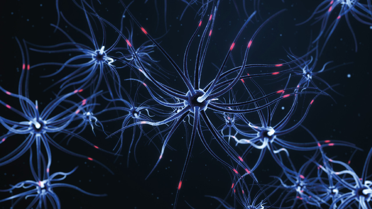 Ученые очистили мозг мышей от «альцгеймерских» бляшек кислородом и излучением