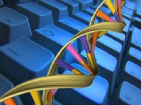 [Президент одобрил] обязательную геномную регистрацию трупов
