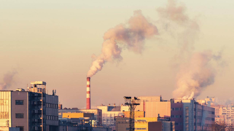 Загрязнение воздуха связали с риском прогрессирующей потери зрения