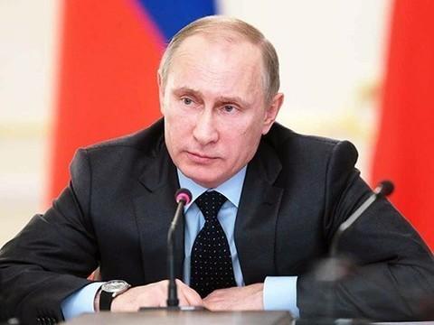 Путин выступил против исключения иностранных компаний из системы госзакупок