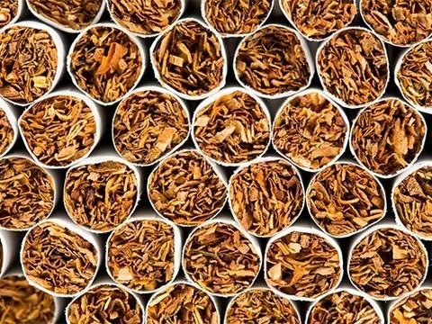 50 сигарет вызывают одну мутацию  в клетках легких