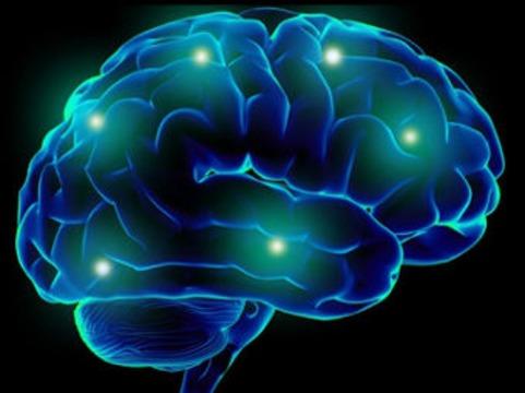 Происхождение разума [связали с мутациями в геноме позвоночных]
