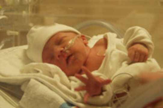 Недоношенные младенцы чаще [остаются бездетными]