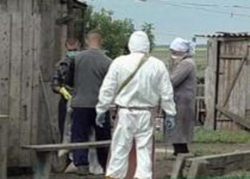 """Эксперты """"Вектора"""": птичий грипп может """"поселиться"""" в России надолго"""