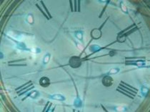 """""""Часы"""" в сперматозоиде помогут точно установить время изнасилования"""