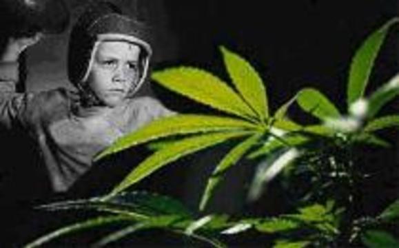 Суд разрешил американской матери успокаивать ребенка марихуаной