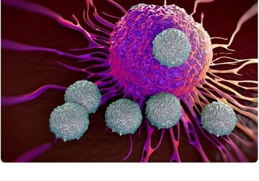 В России создают тест на определение Т-клеточного иммунитета к коронавирусу