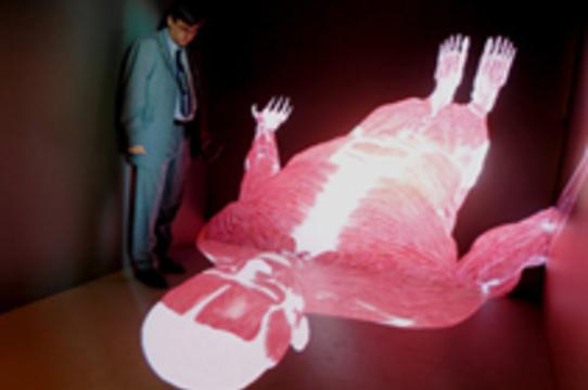Компьютерная модель позволяет [увидеть тело пациента изнутри]