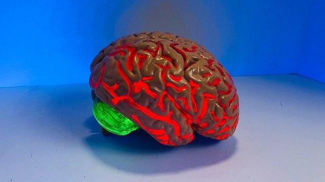 Забыли предупредить: диагностировать болезнь Альцгеймера станет проще