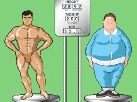 Индекс массы тела предложили заменить [индексом формы тела]