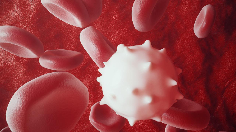 Персонализированная вакцина от рака продемонстрировала длительное действие